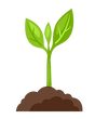 plant1.png