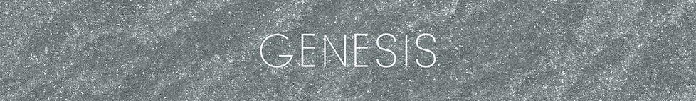 genesis full des pr.jpg
