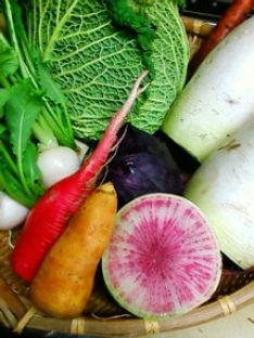 有機農園から届く新鮮なとれたて野菜