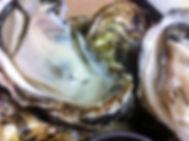 安浦スパルタ生牡蠣