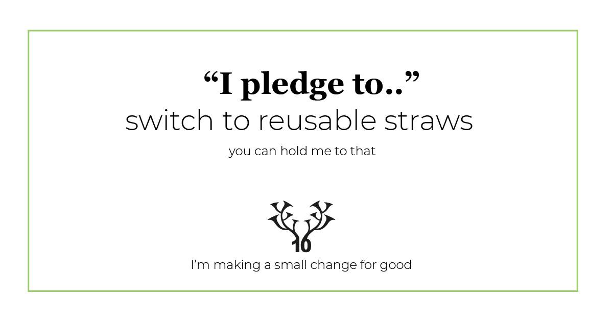 10horn-creative-small-change-for-good-reusable-straws