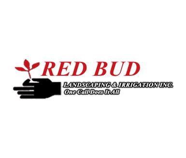 RedBug.jpg