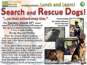 Lunch and Learn - March 2019 - Search an