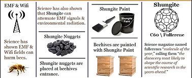 Shunigt Honey FAQ