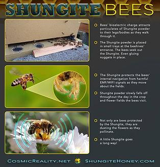 Shungite Bees