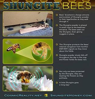 www.ShungiteBeehives.com