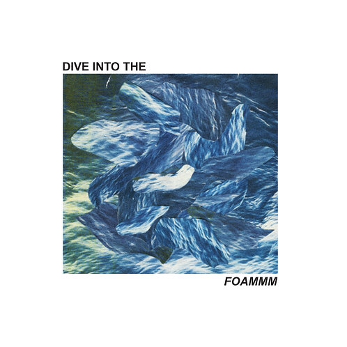 FOAMMM - Dive Into the FOAMMM 12""