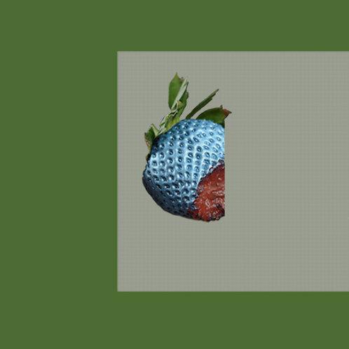 BICHKRAFT - Mascot LP
