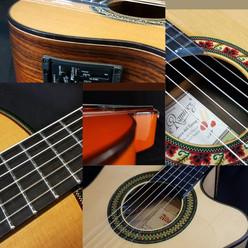 Guitars and Violin
