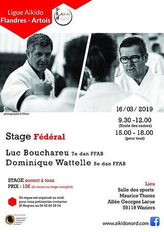 Bouchareu Wattelle 20190316.jpg