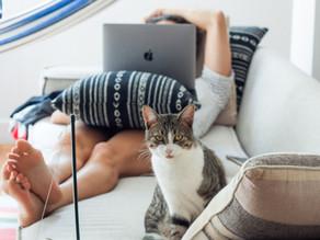 אמא במשרה מלאה? 14 הדרכים הטובות ביותר להרוויח כסף בעבודה מהבית [2021]