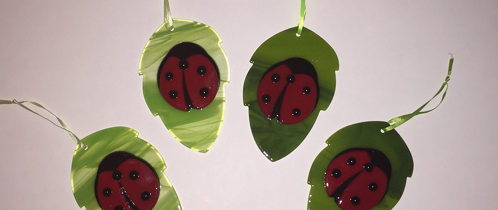 Small Ladybug on Leaf