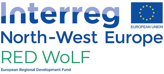 Logo_RED WoLF.JPG