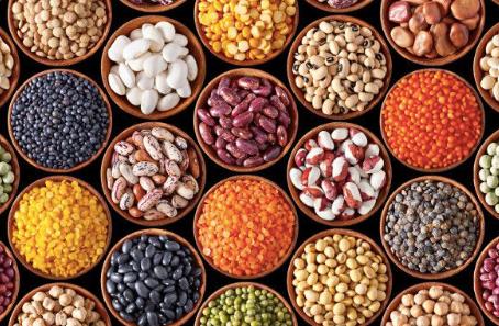 Des semences à l'autonomie alimentaire