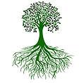 Be Shudh, Be Organic