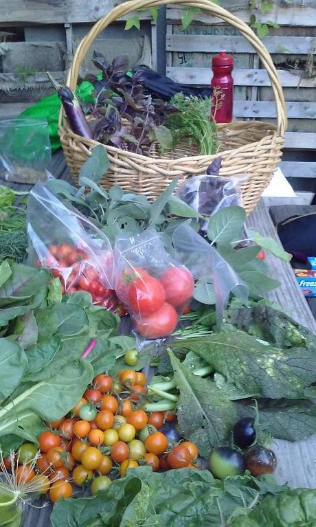 gardenproduce.jpg