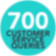 customer service queries