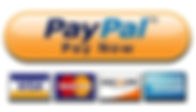 paypal now button