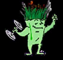 healthy lawn's mascot