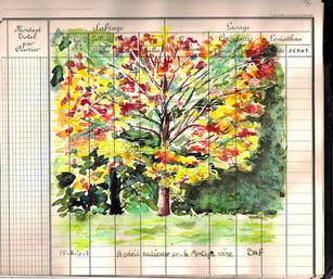 Un jour, un dessin  Journée ensoleillée d'automne