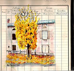 En automne L'une des rues des plus jolie de Mazamet! Maréchal Foch