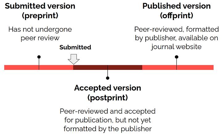 publicationprocess.png