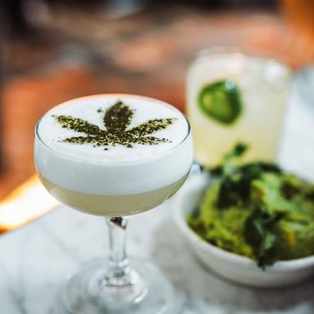 Alcohol vs. Cannabis.