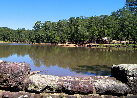 Have one of the best fish catches of your like thanks to your Lake Bastrop fishing guide.