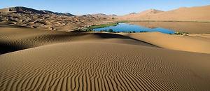 adventure-alone-arid-barren-274014.jpg