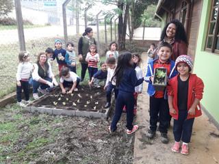 CEISB ensina crianças a cuidarem de horta
