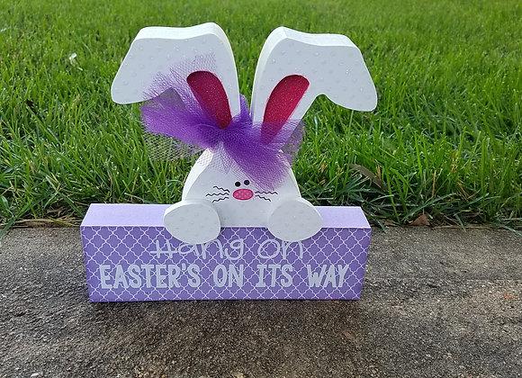 Hang on Easter Bunny