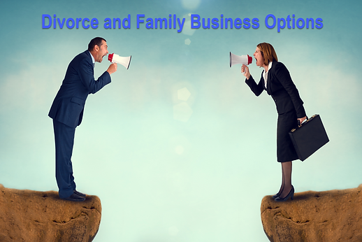 Divorce Family Busines Options