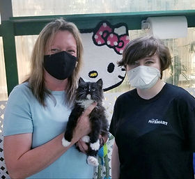 Christy Smith, Petsmart district Manager in Gulfport Ms came for a Tuxedo Ragamuffin she named HENRY.