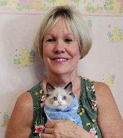 Susan Stone came from Shreveport La for a  Ragdoll she named JAMIE