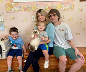 """Ragdoll """"Griswold"""" is now in the loving home of Chelsea, Cody Barrett & Lucien Hill of Denham Springs La."""