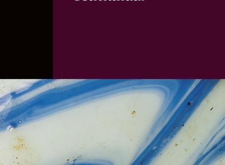 Maturaprojekt als Buch veröffentlicht