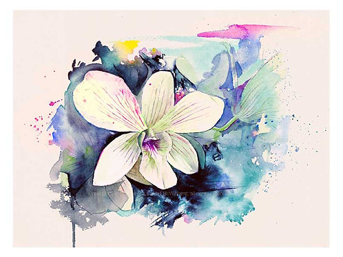 "Naples Orchid, 9"" x 12"" Limited Edition Print"