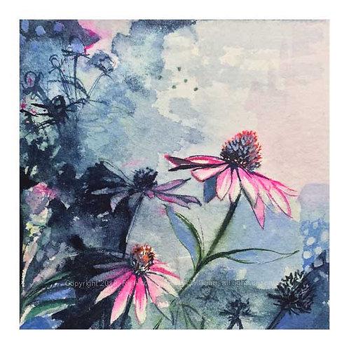 "Echinacea, 8"" x 8"" Print"