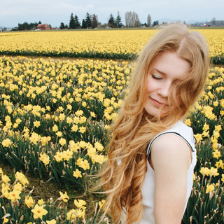 daffodil fields forever