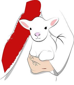 sheep-5480218_640.jpg