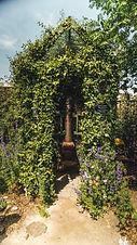 garden_photos-17.jpg
