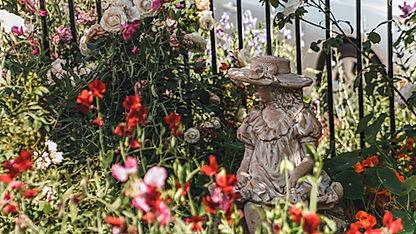 garden_photos-81.jpg