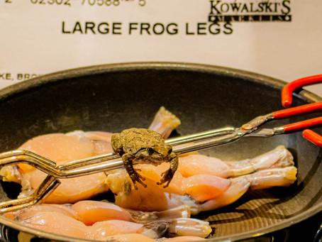 And The Frog Said...