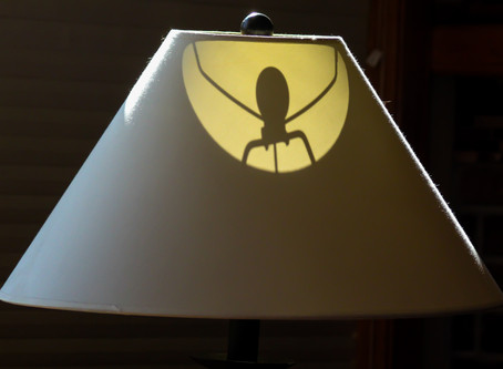 Spider in the Lampshade