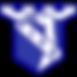 Vise_Logo.png