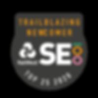 SE100_Badge_2020-TOP25.PNG
