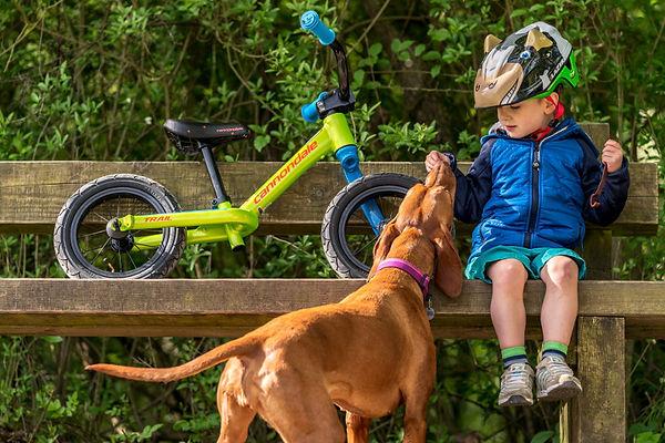 Le plus grand choix de vélos enfants est chez Véloland Perpignan