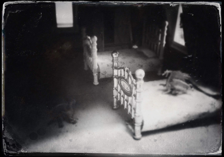 Night Terrors II
