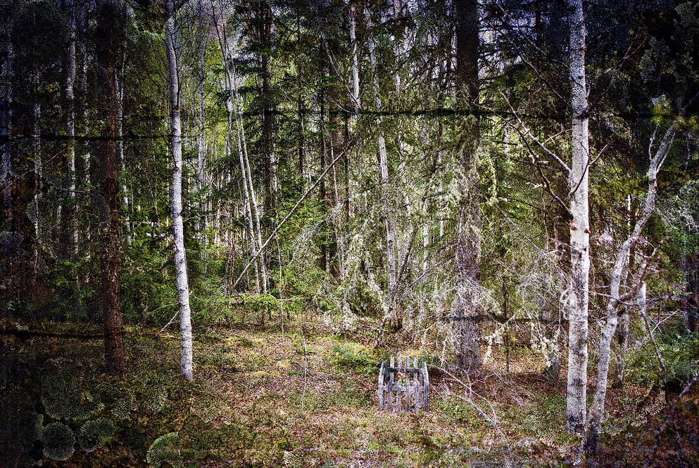 Abandoned Cemetery, Goldfields, SK
