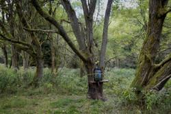 Nikolai, Czechia: Hunting Blind on Former Soviet Work Camp